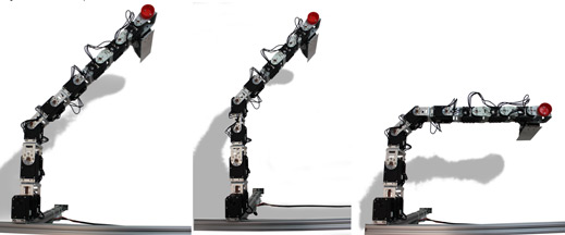 Ahows damage conditions the hexapod robot learned to overcome.
