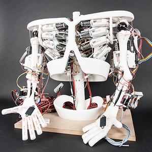 Roboy robot