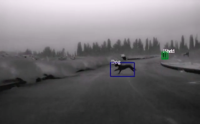 Thermal imaging could allow autonomous cars to see more at night.