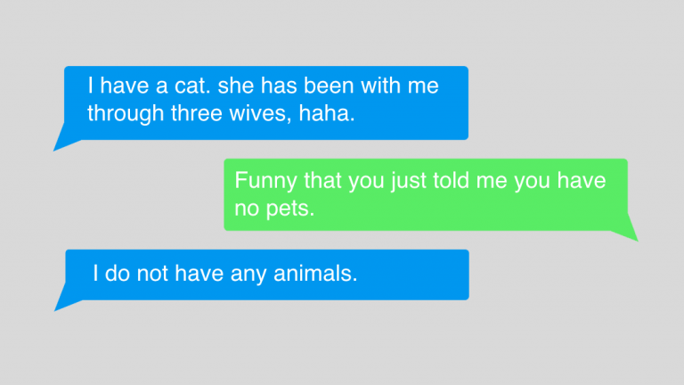 "A two person text message exchange that say ""I have a cat. she has been with me through three wives, haha."" and then ""Funny that you just told me you have no pets"" and then ""I do not have any animals."""