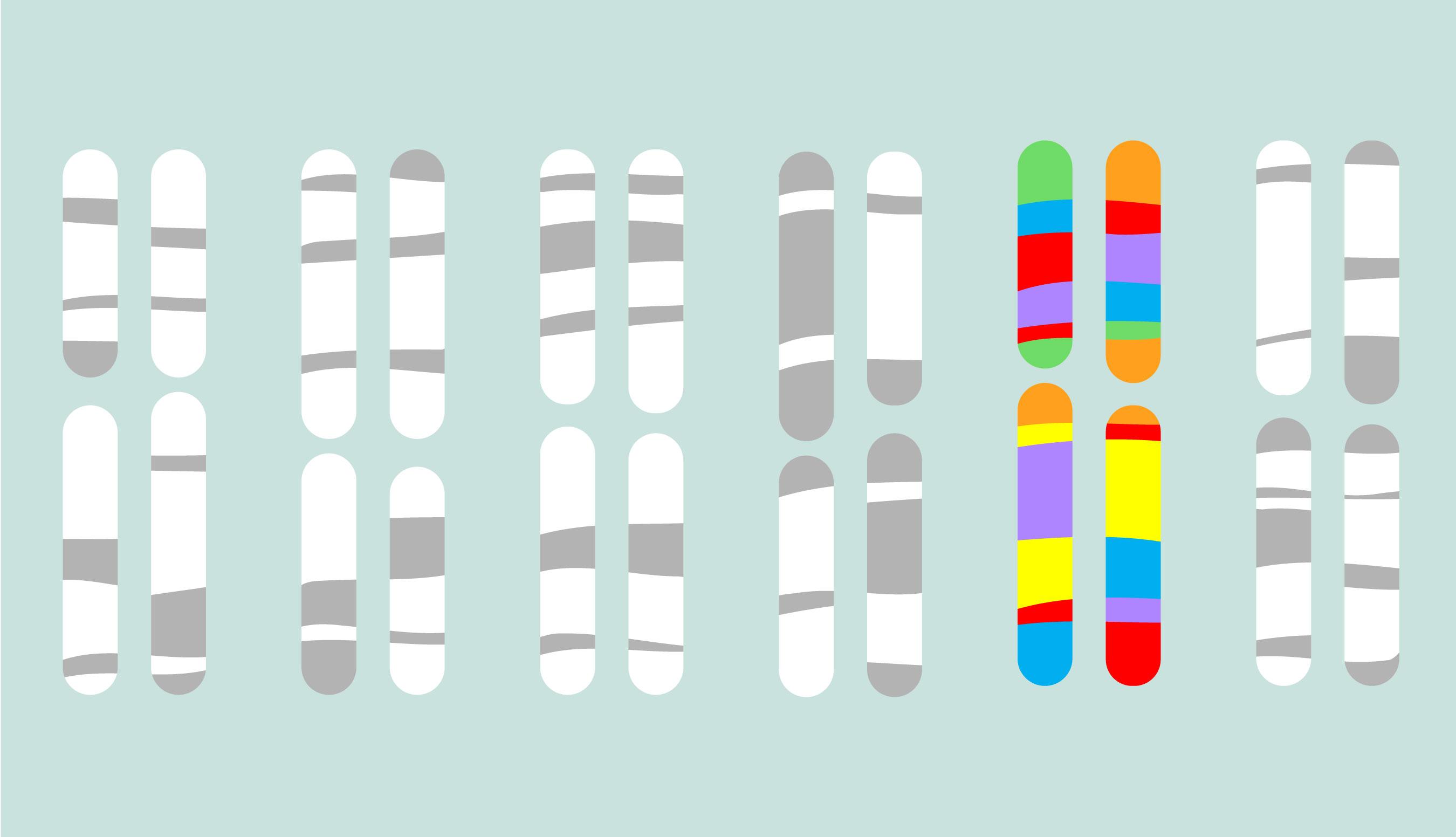 Suggest biological genes gay lesbian facts