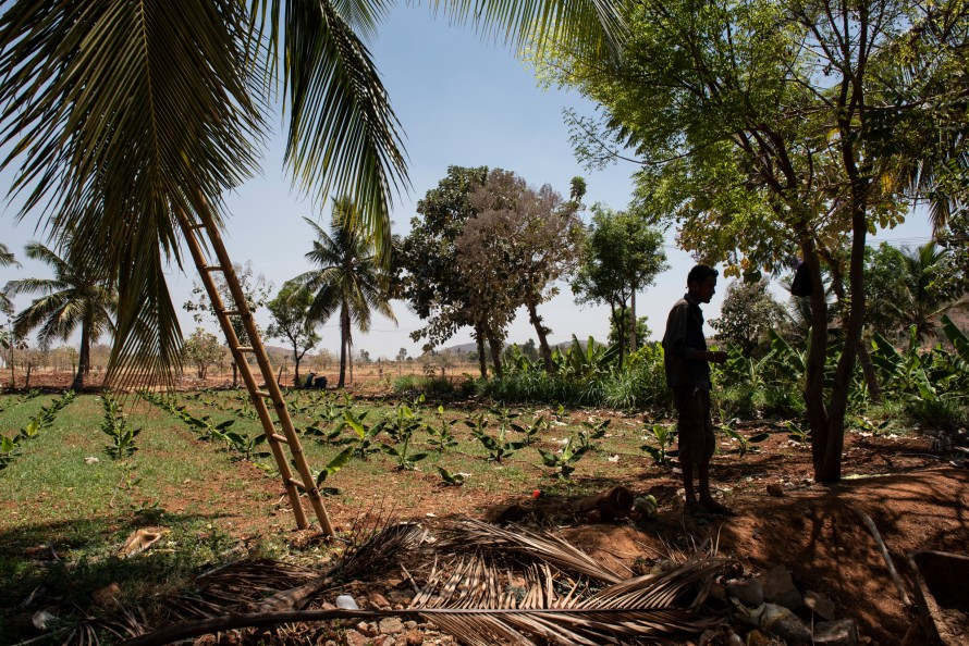 Photo of a farmer in his family owned farm that is now using a solar powered irrigation system