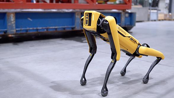 Spot mini robot on an oil rig