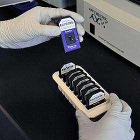 technician tests 142 genes