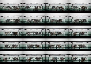 fish tank full of spheres