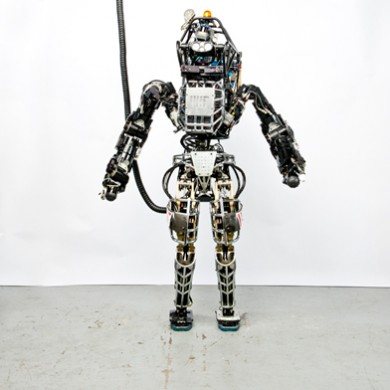 Atlas robot standing tethered