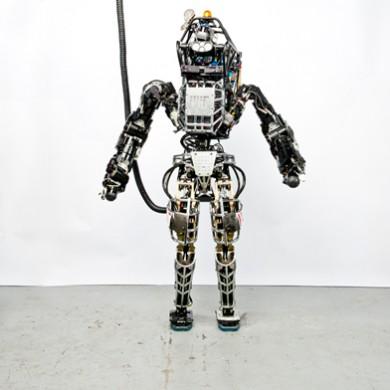 Atlas robot standing tethered