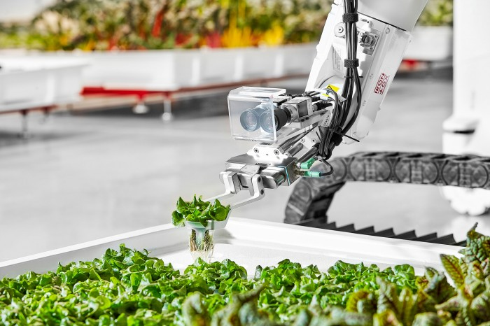 Photo of robotic arm holding plant