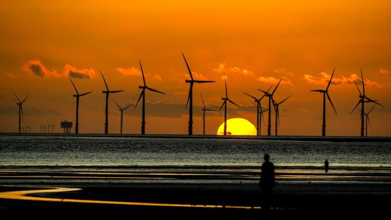 A wind farm off the UK coast