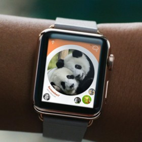 How People Will Use the Apple Watch