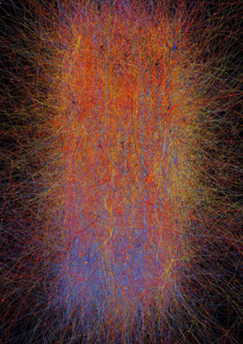 A Working Brain Model - MIT Technology Review