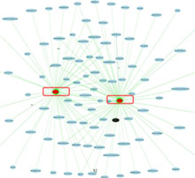 Mapping the Malicious Web - MIT Technology Review